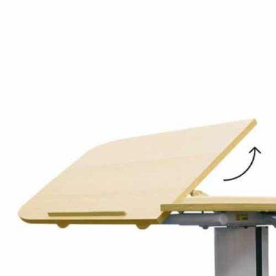 โต๊ะคร่อมเตียง